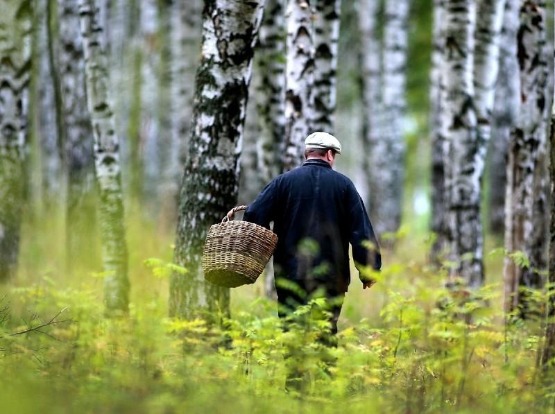 Как снять клип самому на телефон