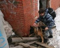 Школу для волонтеров планируют создать в Вологде