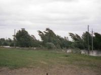 Синоптики прогнозируют усиление ветра в Вологодской области