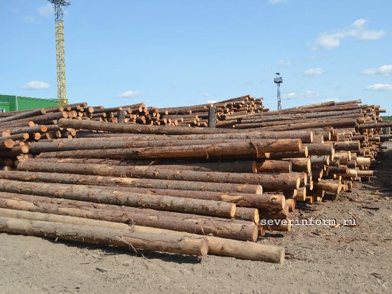 С начала года объем экспорта предприятий Вологды составил около 10 миллиардов рублей