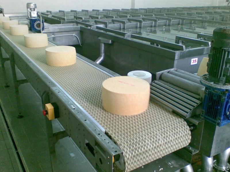 ВВологодской области построят очередной сыроваренный завод