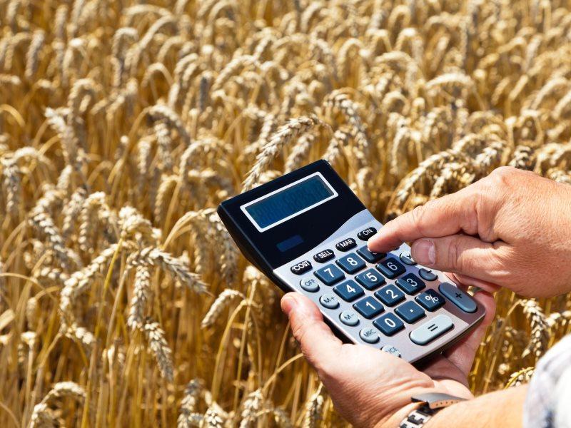 Наразвитие сельского хозяйства Чувашия получит 478 млн руб.