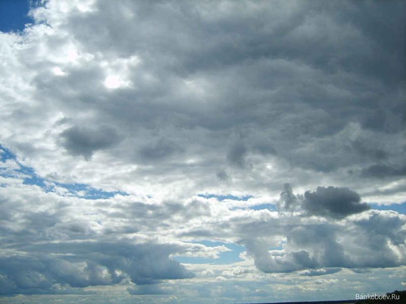 Погода на савушках алтайского края на 10 дней
