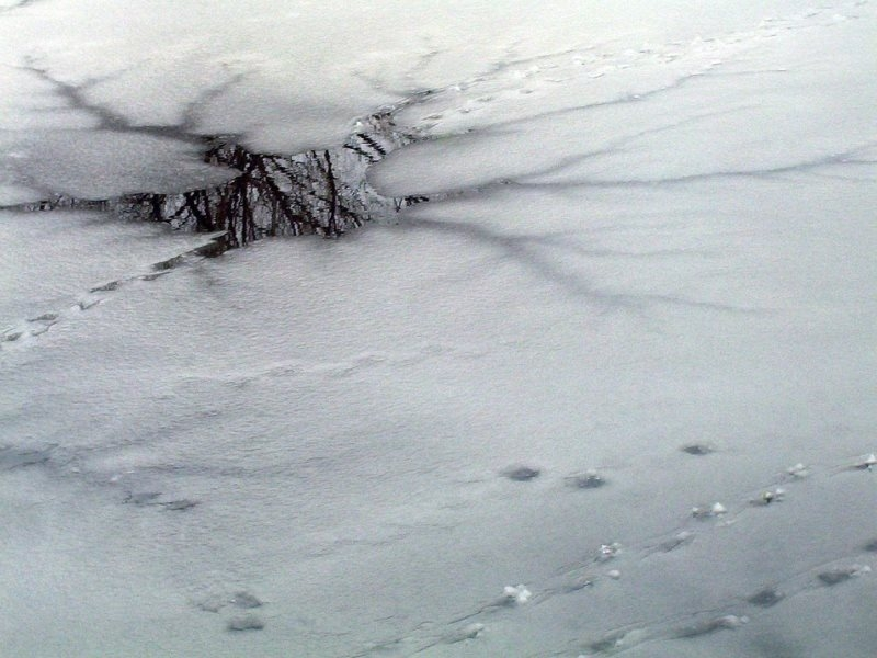ВВологодской области найдено тело рыбака, провалившегося под лед наснегоходе