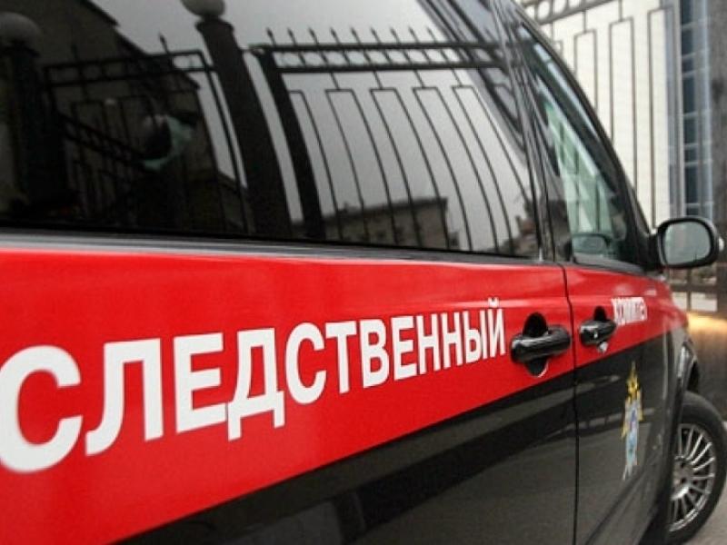 ВНикольском районе фура насмерть сбила 10-летнюю девочку