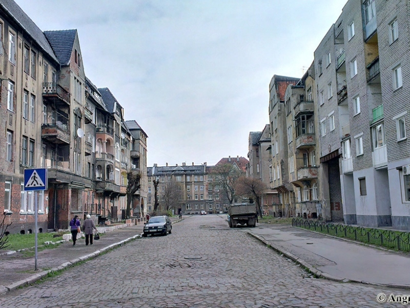 ВЧерняховске отыскали убийцу мужчины, обнаруженного надне колодца