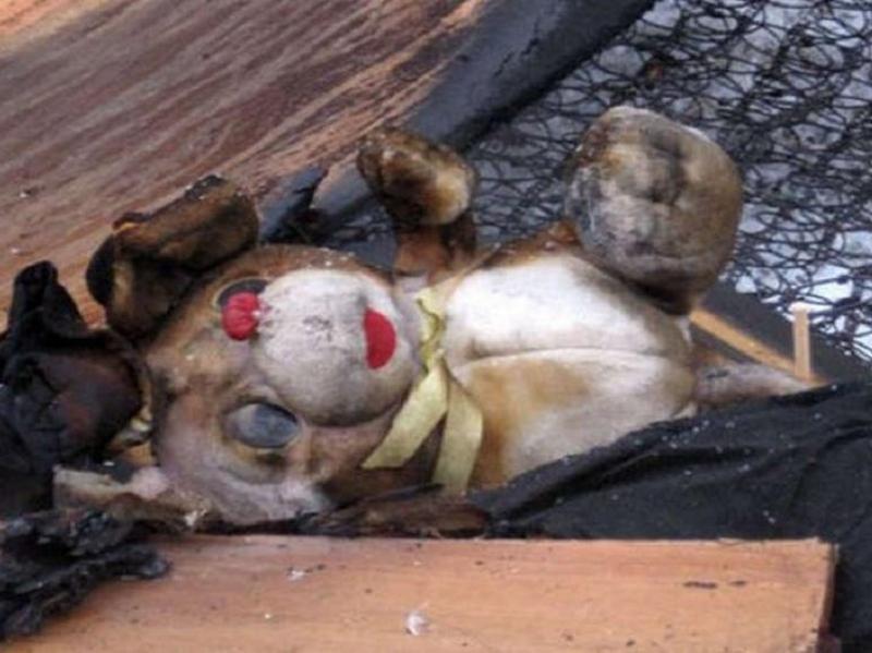 Под Вологдой вгорящей квартире погибли две маленькие девушки