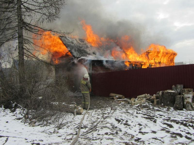 Несколько десятков животных погибли напожаре вЧагодощенском районе